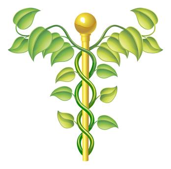 holistic symbol